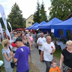 EkoFest w Pleśnej