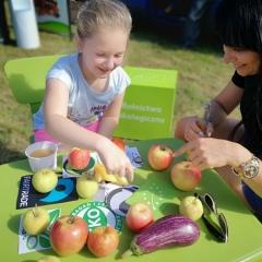 Żywność ekologiczna w szkołach w Tarnogrodzie
