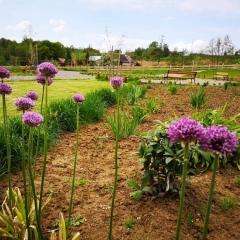 Ogród - bank genów w Rzuchowej obudził się do życia